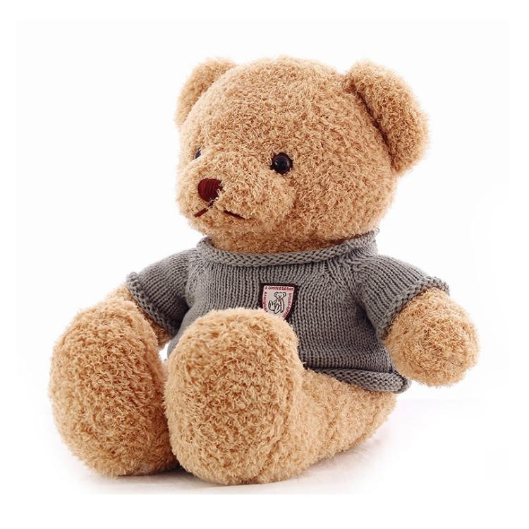 Custom Stuffed Animal Cute Plush Teddy Bear in a Jacket