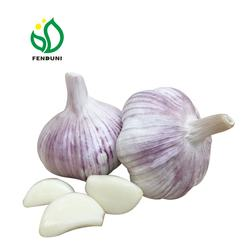 2020 garlic in china of garlic stock