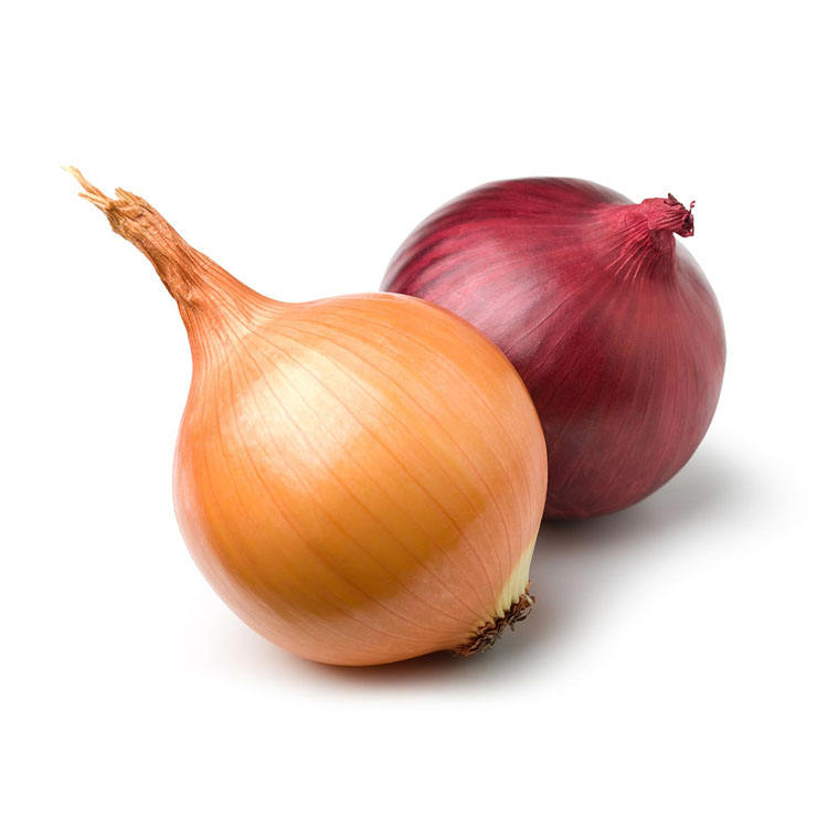 Wholesale 10kg bag red yellow fresh onion to Malaysia