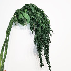 Amazon high grade long storage long lasting hanging amaranthus natural preserved flowers