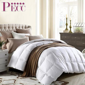China Cheap Comforter Customized Home Textile Wholesale Summer And Winter Duck Down Feather Comforter