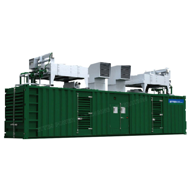 Electric generator 1000kw natural gas power plant with wholesale price