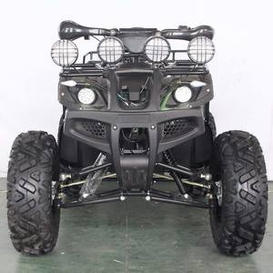 Super September Cheap Electric ATV Differential Adult