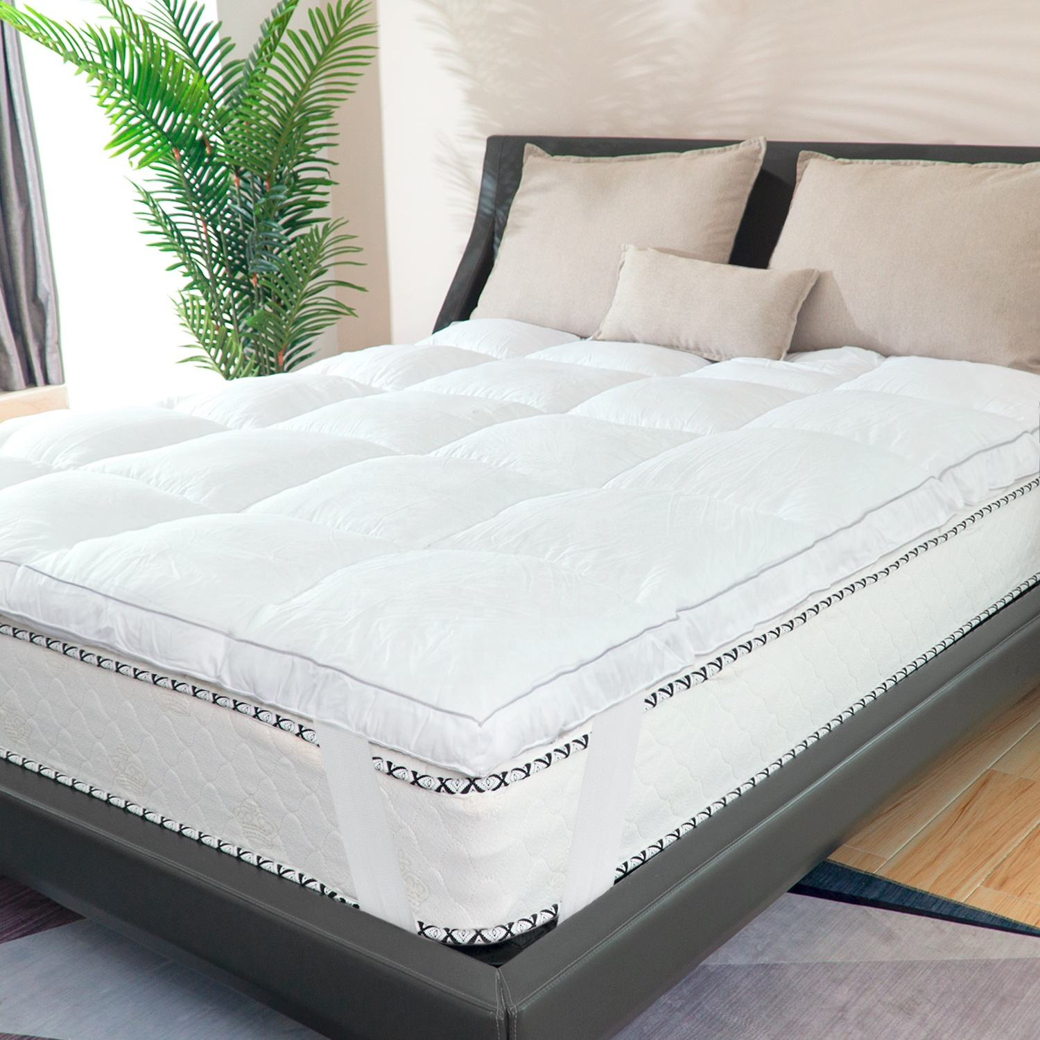 Euro Queen King Size Compress Pocket Spring Memory Foam Bed Mattress Cotton OEM Knit Plush Wool Fabric Packing Furniture Organic