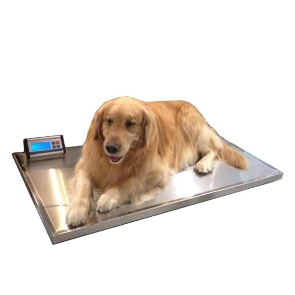 YSVET-TZC150 Animal Pet Veterinary Scales for Cat Dog Weight Control