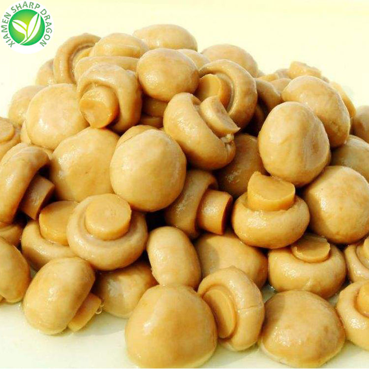 Best brands wholesale prices whole salted canned champignon mushroom slices for sale