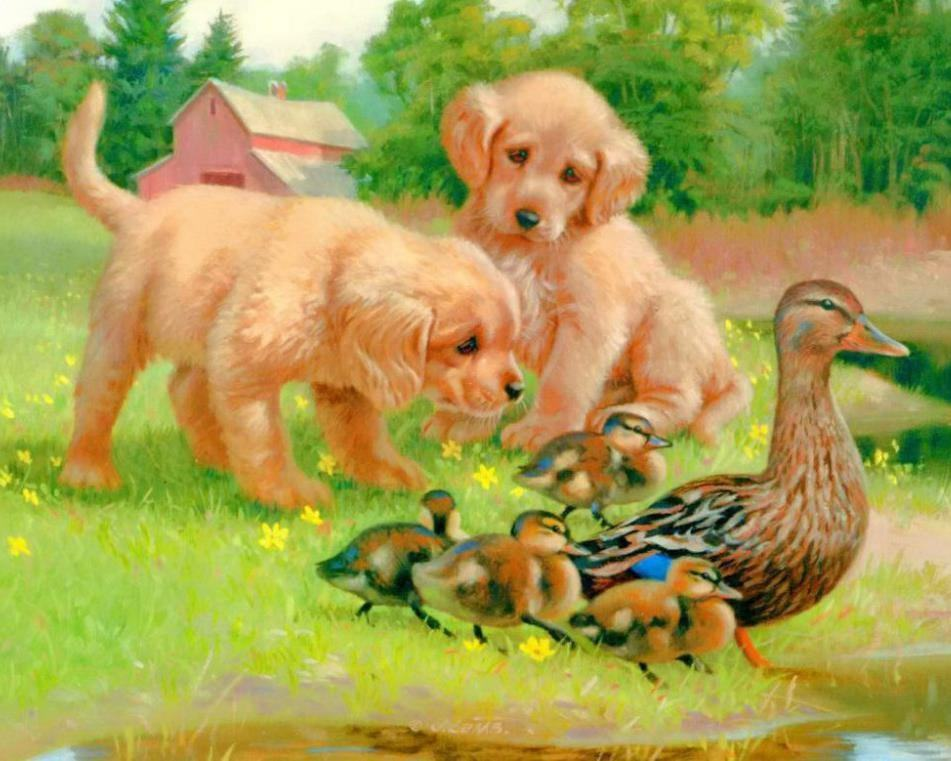 GZ695- 40*50 famous dog and duck painting Wall art canvas diamond painting artwork