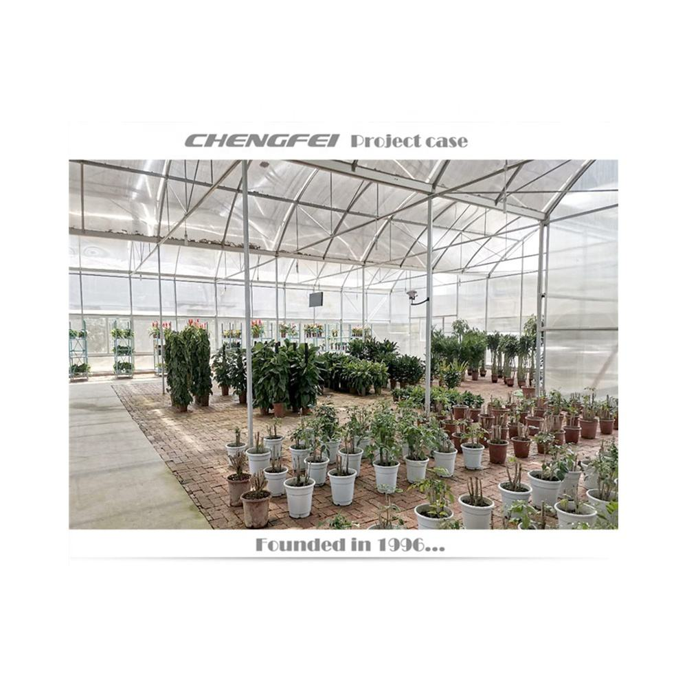 Greenhouse for Flower Cultivation