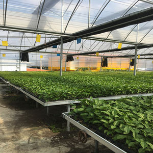 Agricultural equipment flower growing green house