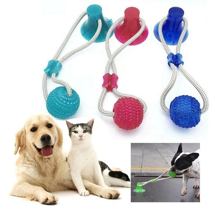 Pet Dog Toy Suction Cup Interactive Dog Molar Bite Toy With TPR Ball Tooth Cleaning Chewing Playing Ball Suction Cup