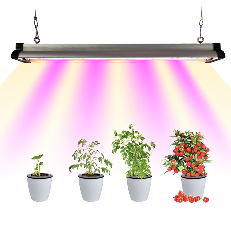 Redfarm factory Full Color indoor 730nm seoul 385nm 320w Dimming 30w spectrum plant lmap ir uv led grow lights