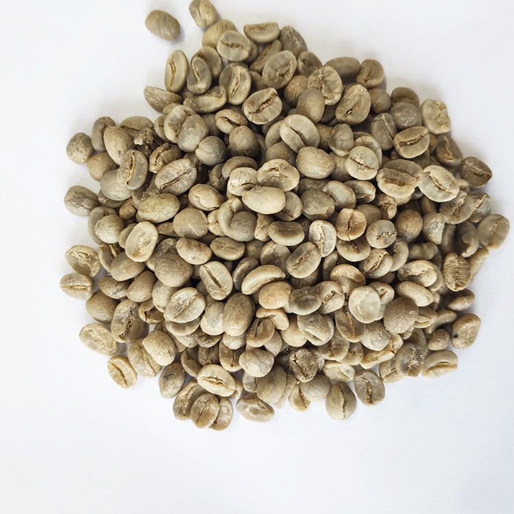 Chinese Hot Sale Arabica Raw Green Coffee Beans