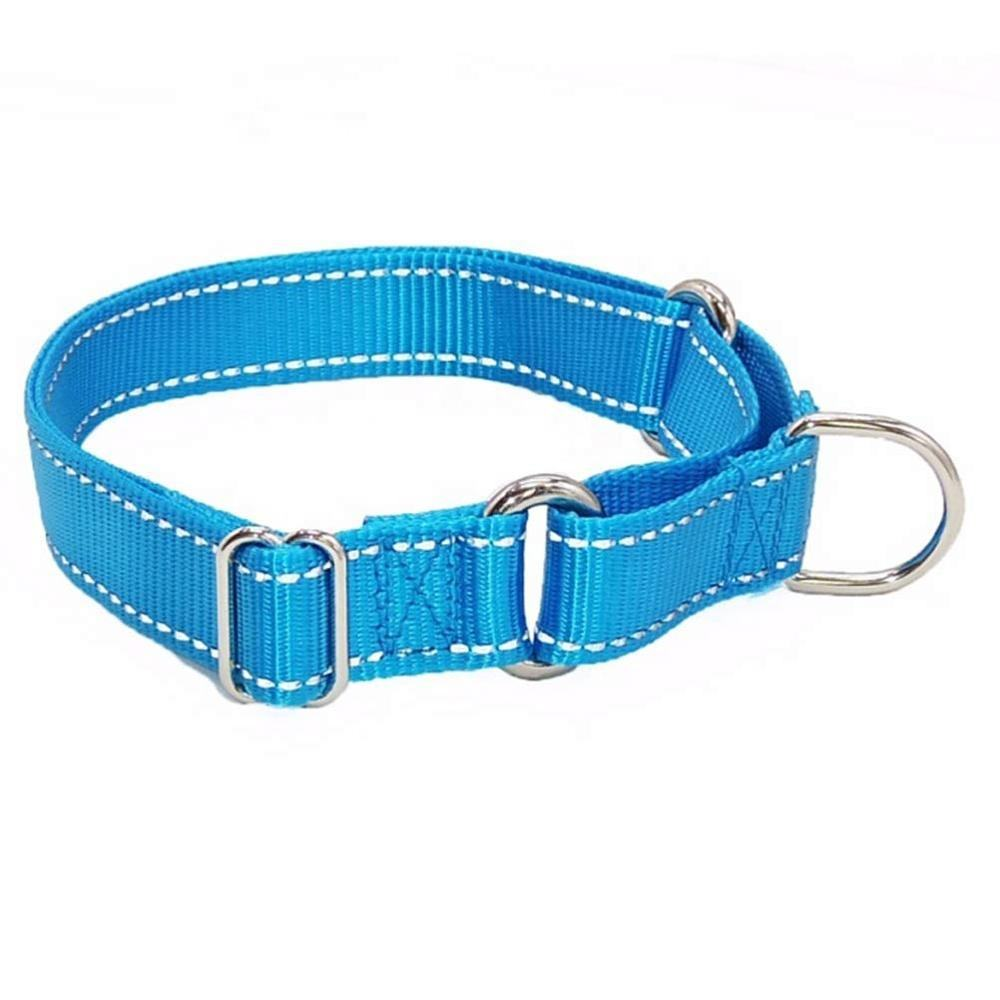 Reflective Nylon Martingale Dog Collar for Small Medium Large Dogs