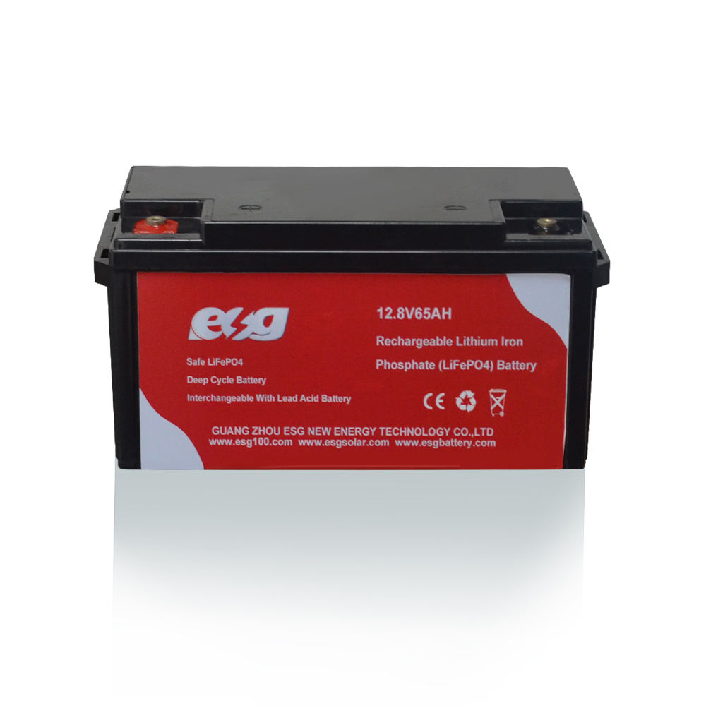 ESG 3.7volts 12.8v 65ah 48v 150ah 300ah Lifepo4 Storage Batteries Pack polymer lithium ion battery