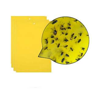 Strong Flies Traps Bugs Sticky Board Catching Aphid Whitefly Thrip Leafminer flying glue trap