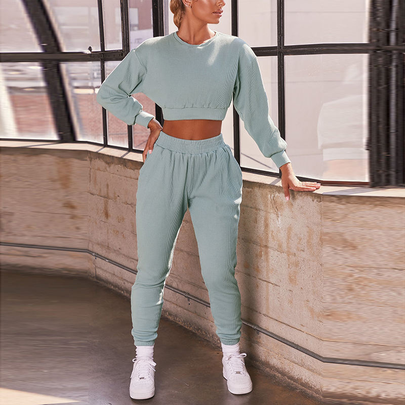 Casual Solid Color Crop Top Pencil Pants Outfits Long Sleeve Two Piece Set Two Piece Fall Sets Women Two Piece Pants Set