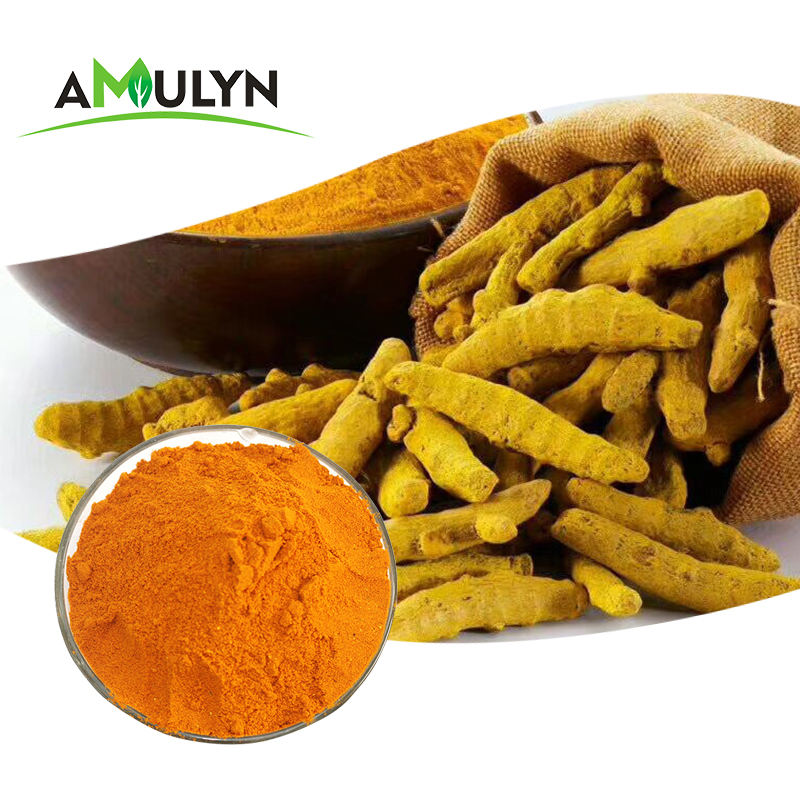 Anti-Inflammatory Bulk Natural Food Pigments Turmeric Curcumins 95% Root Extract Powder