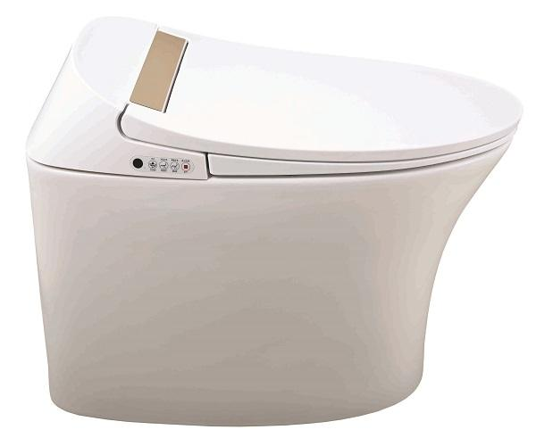 Luxury striped clean vagina washing bidet toilet