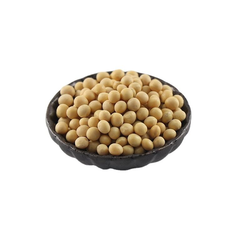 New Hot Items Prices Protein Soya Beans Soybean