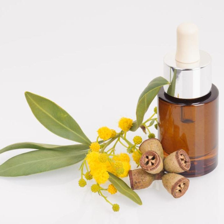 Pharma Grade Eucalyptus Globulus oil for Repellent and bio pesticide