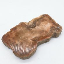 Wholesale natural raw petrified wood fossil slice prices
