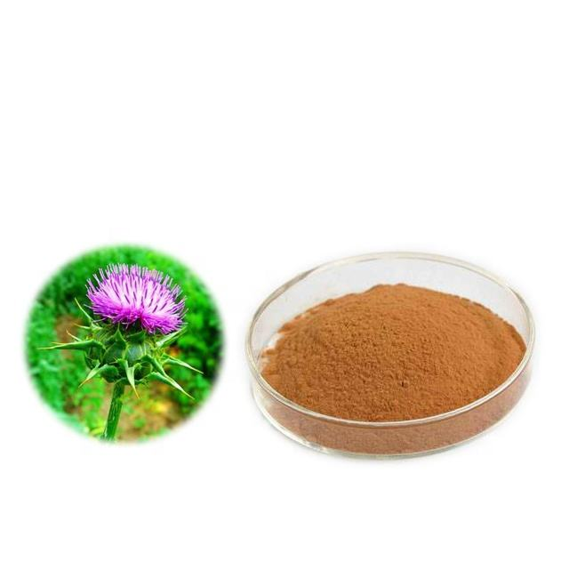 Factory supply Milk thistle extract water soluble 80% silymarin