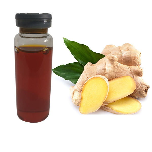 Reasonable price of organic ginger essential oil