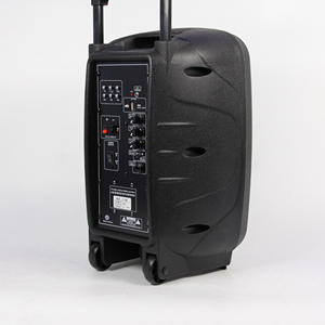 10 inch Professional Active Trolley Speaker Box With Wireless Microphone ,Bluetooth