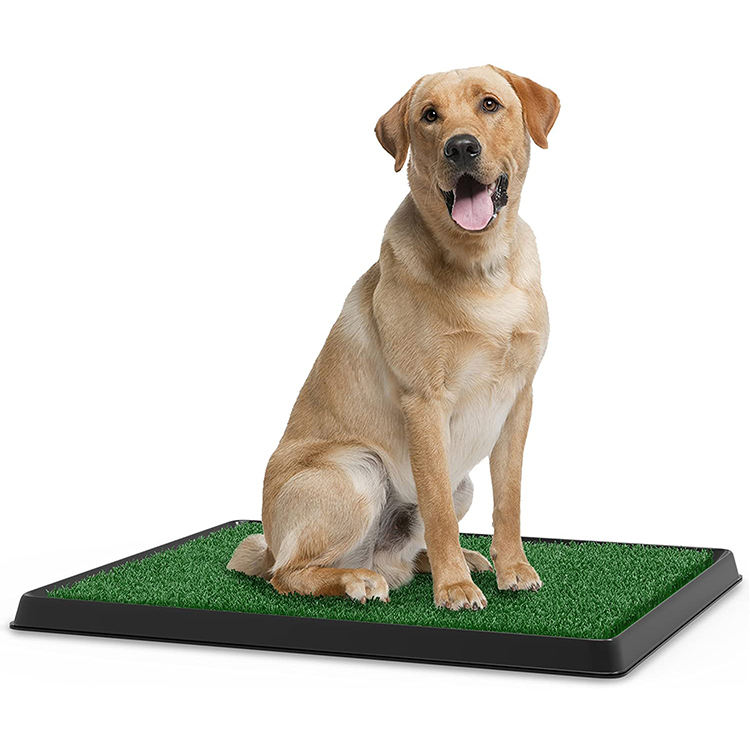 Artificial Grass Bathroom Mat for Puppies and Small Pets- Portable Potty Trainer for Indoor and Outdoor Use/indoor dog toilet