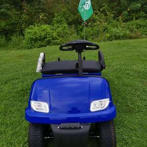 single seat cheap mini golf cart for sale  Chinese manufacturer