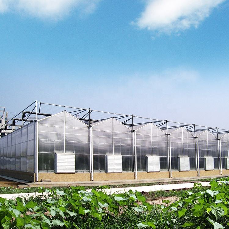 garden green house price of agricultural greenhouse