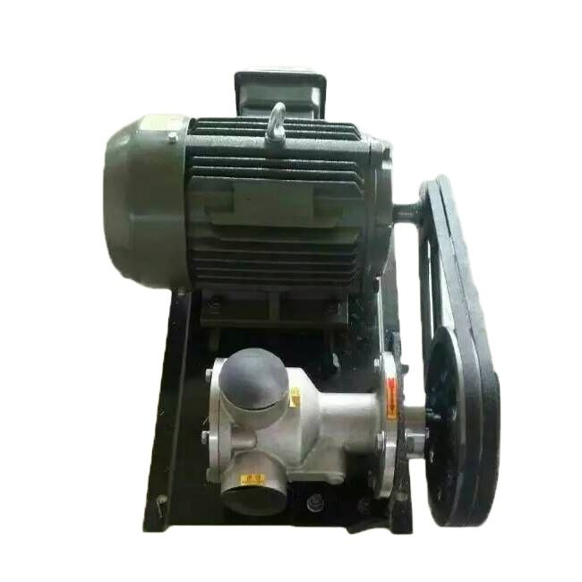 Stainless steel high viscosity health molasses pump can be used explosion proof motor