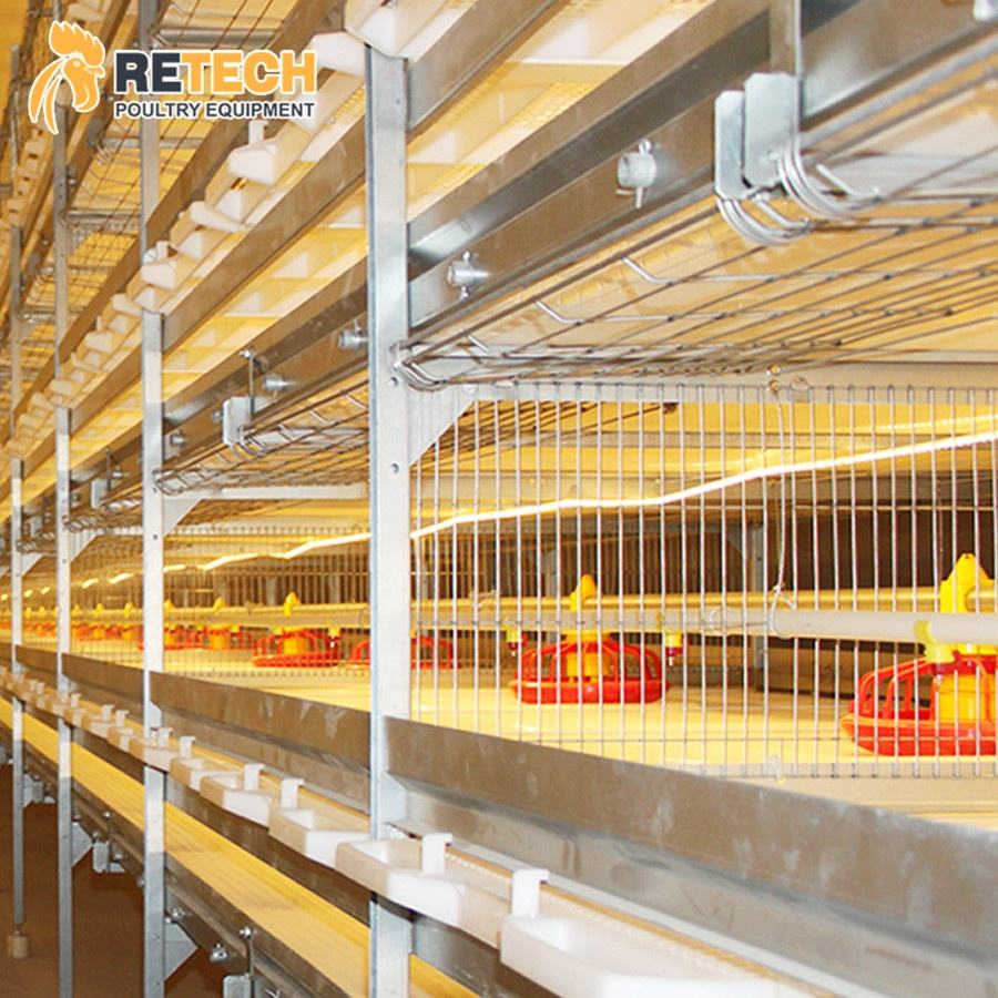 3 Tiers 4 Tiers H Type Modern Design Poultry Farm Shed Automatic Chicken Broilers Cage System