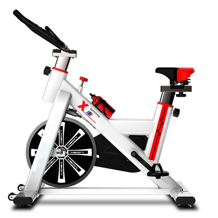 Lydia Sport LY-979 Home Cycling Heavy Commercial Spinning Indoor Bike Magnetic Gym Equipment