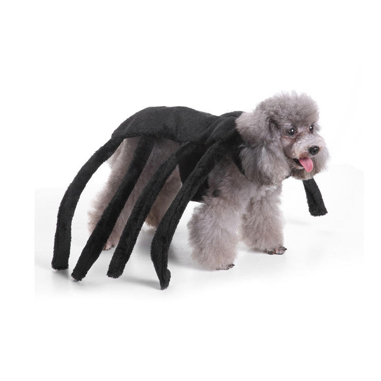 Hot Sale Halloween Spider dog Clothes Puppy Terror Simulation Plush Spider Transformed Pet Accessories