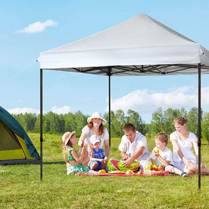3m*3m Event Tent With Carrying Case  Outdoor Party Portable Folded Gazebo Folding Tent
