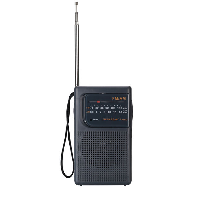 Mini Draagbare Multi Band Radio Am Fm Hot Selling Home Radio