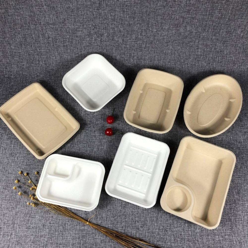 Biodegradable Box Packaging G5 15%off Biodegradable Sugarcane Sugar Cane Bagasse Paper Pulp Food Meat Chipy Cake Tray Compostable Large Rect Water Oil Proof