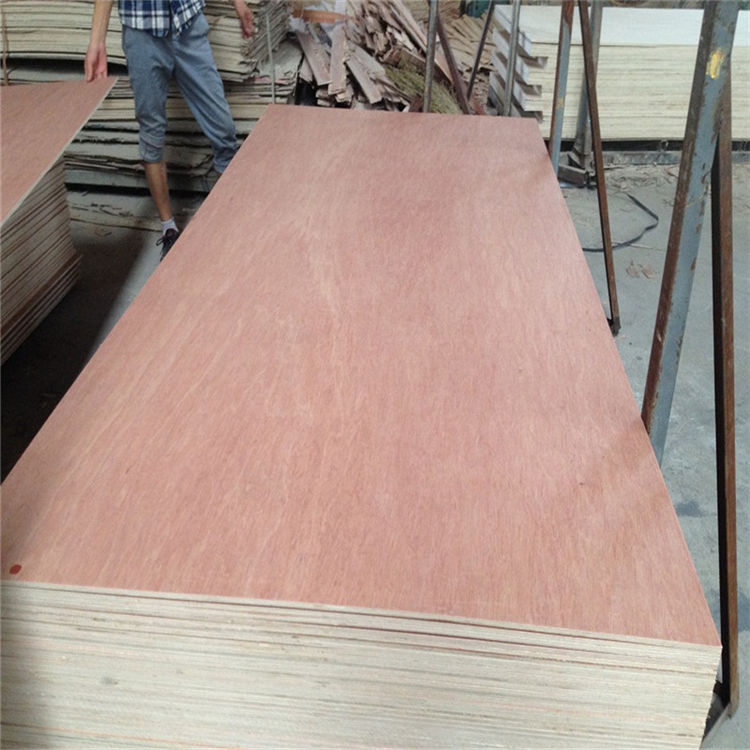 Chanta Plywood Fsc Certified 1220*2440*18mm Bb Cc Grade Commercial Bintangor Plywood For Furniture From Chanta