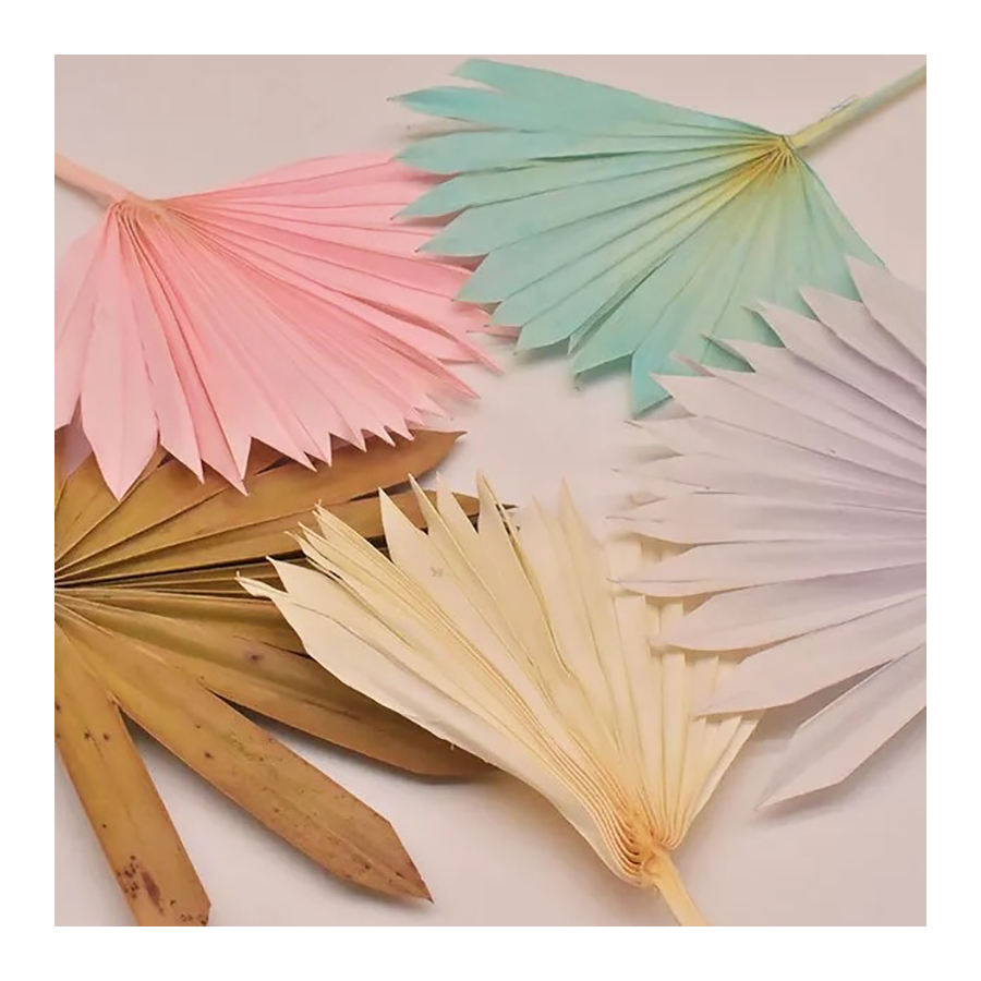 Chinese supplier new products Palm leaf for wedding decoration