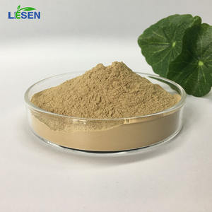 Hữu Cơ Lion 'S Mane Nấm Chiết Xuất/Hermicium Erinaceus Chiết Xuất Bột 20:1