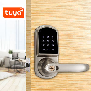 Bluetooth Smart Kunci Pintu Elektronik Single Latch Tuya Smart Door dengan Handle