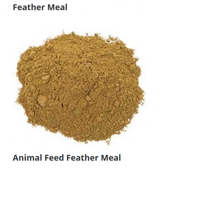 Animal Feed Feather Meal
