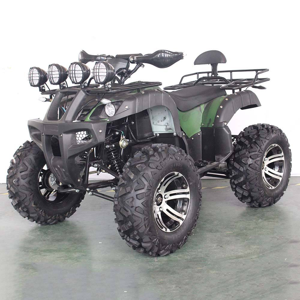 Super September 3000W Volwassen Elektrische Atv Quad Hot Koop