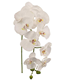 Well Designed artificial singal latex 9 heads real touch orchids flower