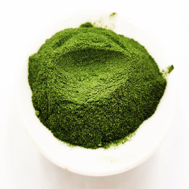 Promotion Factory Offer Good Quality Delicious Nori Powder With Logo Customization