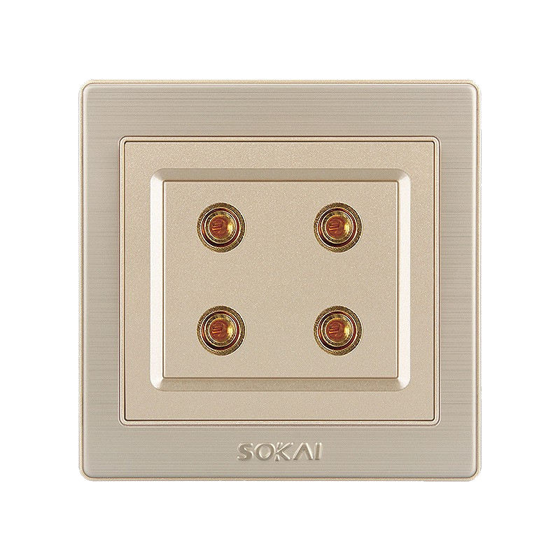 High standard in quality duplex audio socket double sudio port 2 acoustic outlet