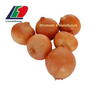 Newest Crop Onion, Fresh Yellow Onion, Cheap Price High Quality Egyption/Tunisian Red Onion