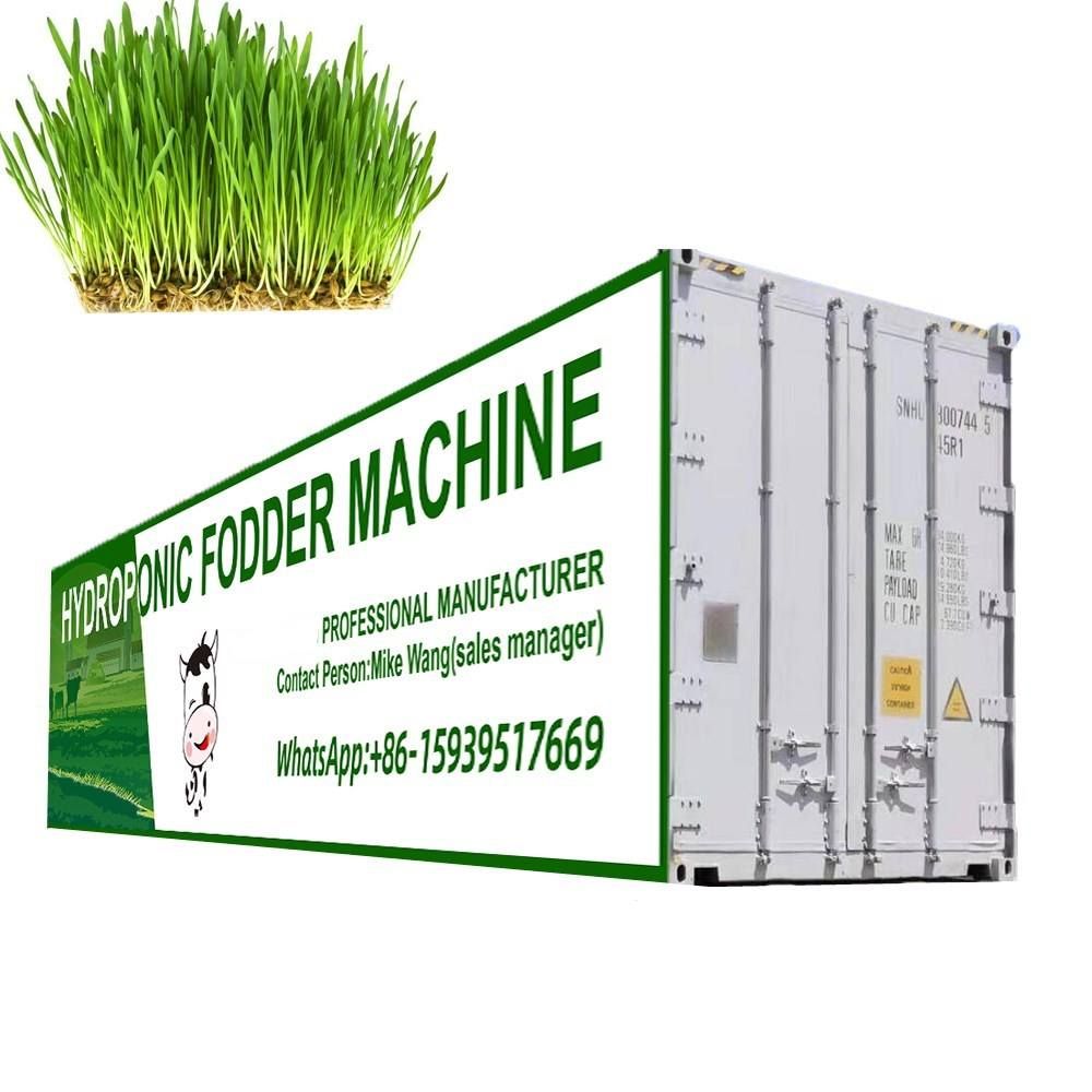 Container type good cost green barley grass automatic hydroponic fodder machine/hydroponic fodder system