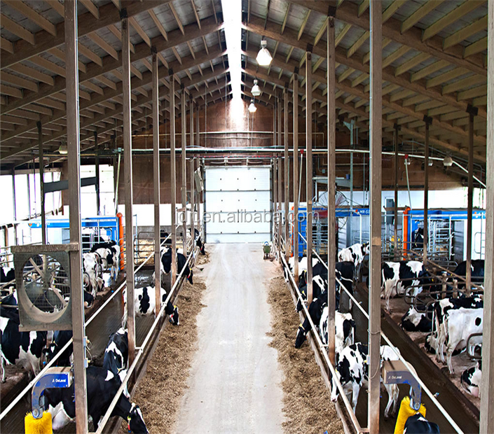 fast assemble steel structure cow shed